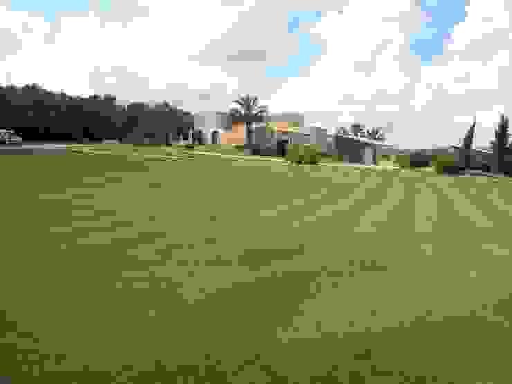 Son Fornes, Majorca Mediterranean style garden by 4D Studio Architects and Interior Designers Mediterranean