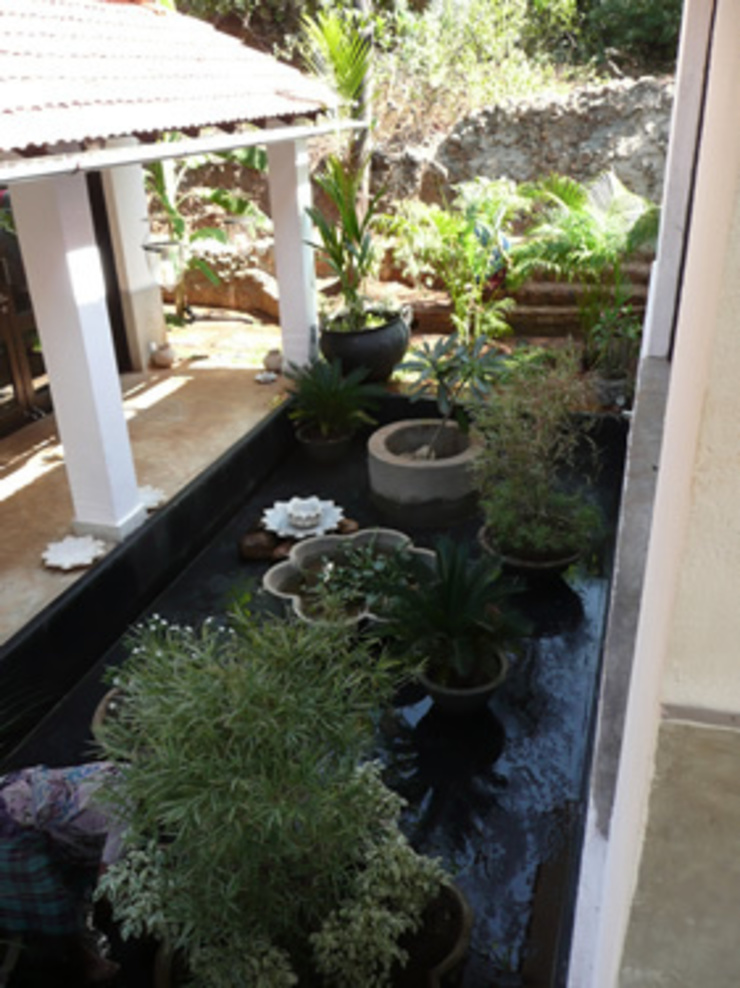 Two Houses in Goa Eclectic style garden by 4D Studio Architects and Interior Designers Eclectic