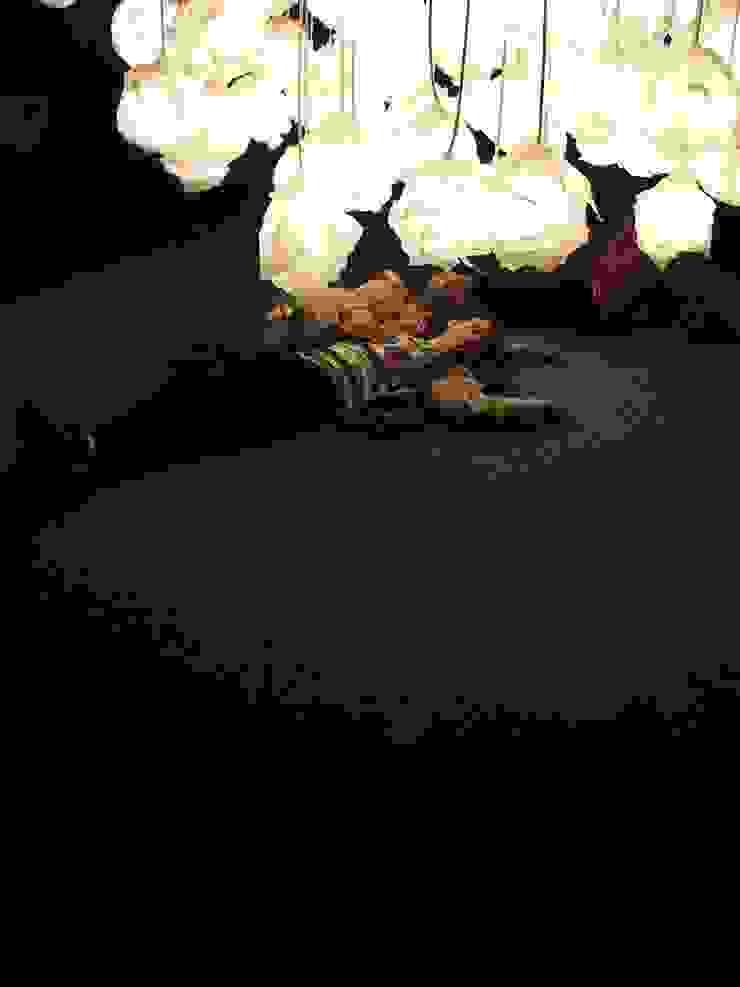 Illuminami a Firenze, Festival della creatività di SeFa Design by nature Eclettico