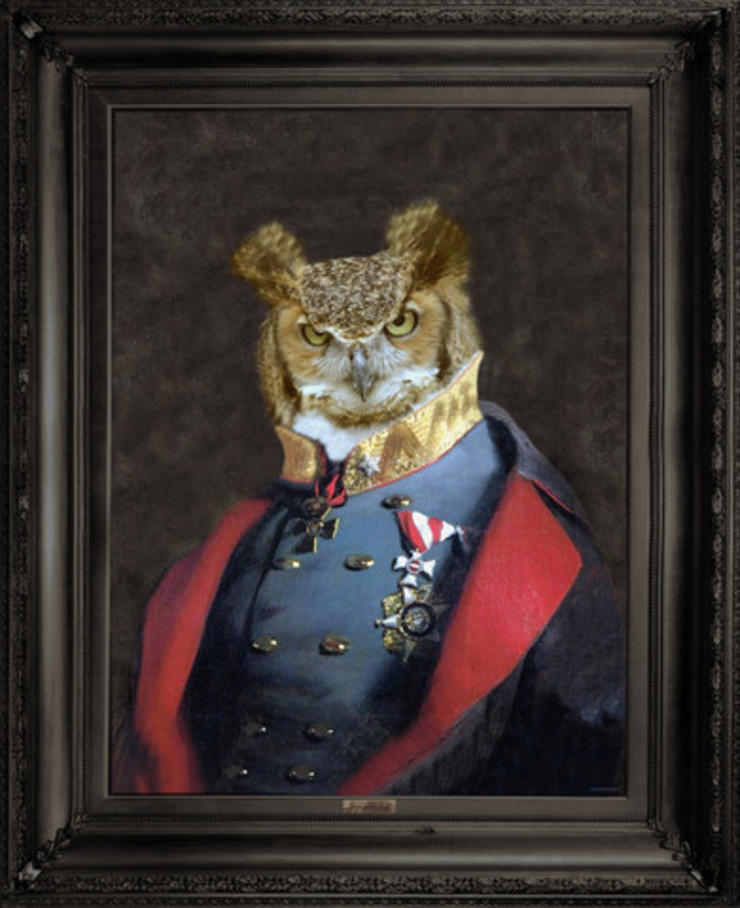 Grandfather Olaf Framed Canvas Print: eclectic  by Anthea's Home Store, Eclectic