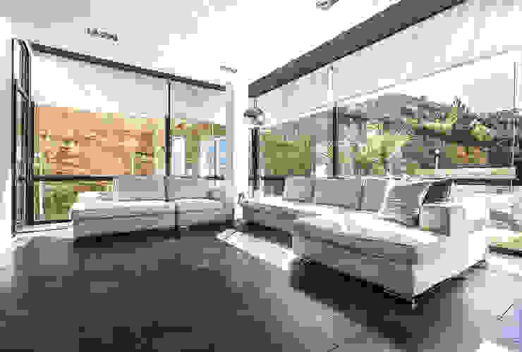 The interior glass wall of the living Studio 4e غرفة المعيشة