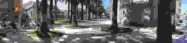 Plaza de las Palmeras, Caldas de Reis de cerredaylorenzoarquitectos