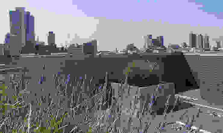 Shoreditch Church Penthouse Modern garden by Space Group Architects Modern