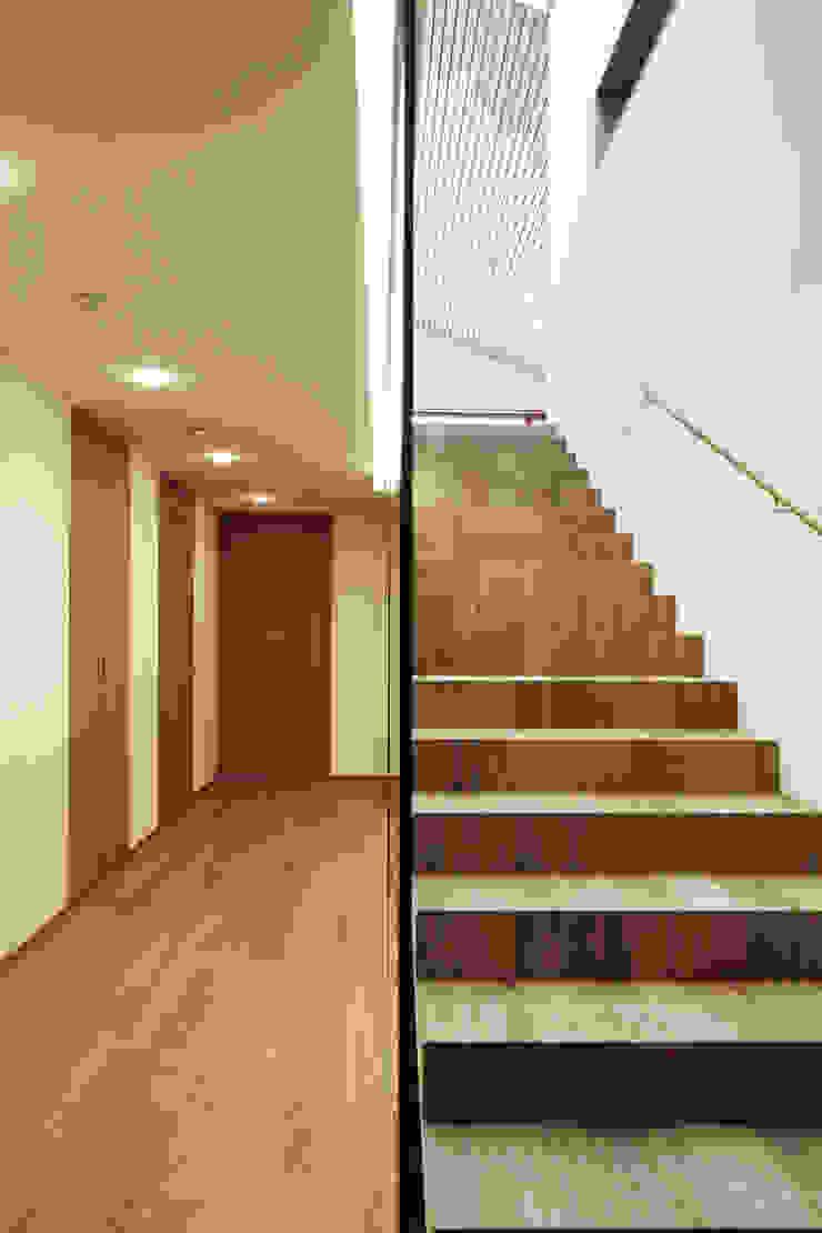 Dietrich | Untertrifaller Architekten ZT GmbH Staircase, Corridor and Hallway
