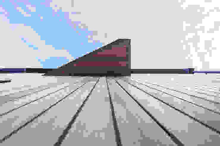 The Cedar Lodges Nowoczesne domy od Adam Knibb Architects Nowoczesny