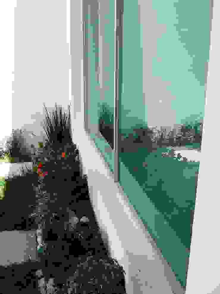 Casa LV Jardines minimalistas de IPALMA ARQUITECTOS Minimalista
