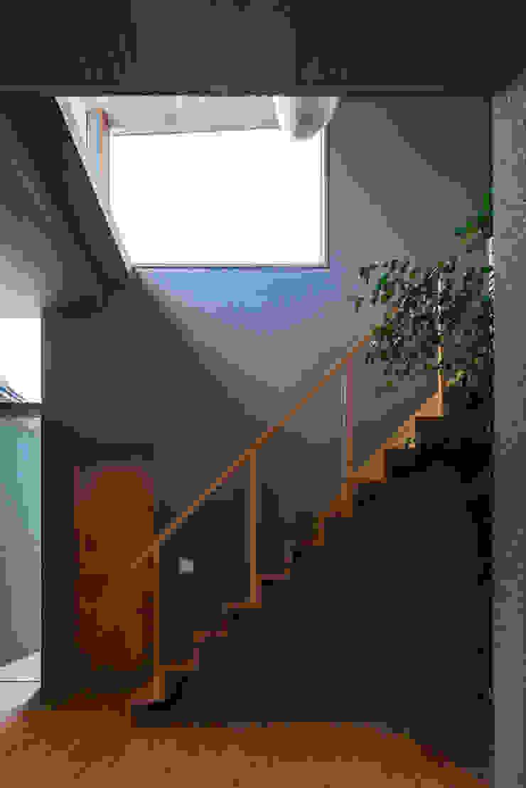 alley モダンスタイルの 玄関&廊下&階段 の 建築設計事務所SAI工房 モダン