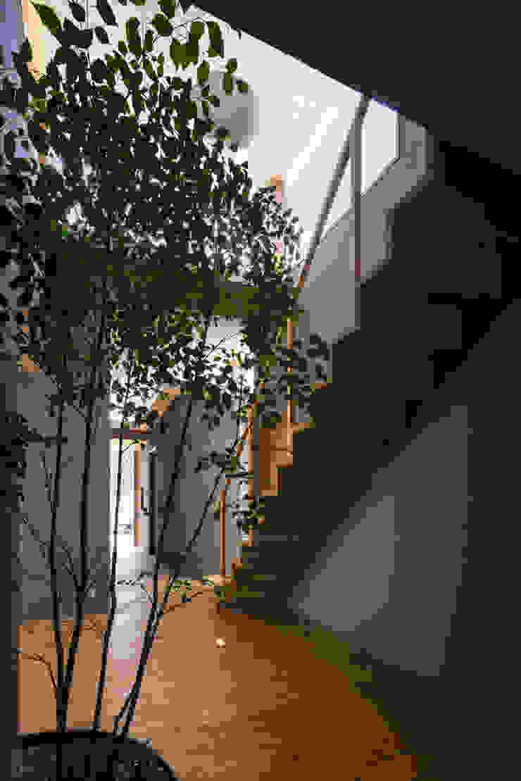 alley モダンな庭 の 建築設計事務所SAI工房 モダン