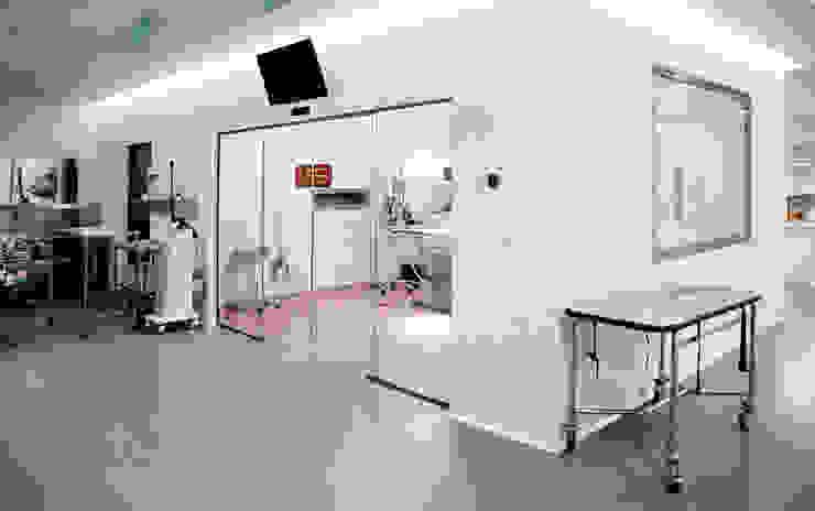 Quirófano principal Oficinas y tiendas de estilo moderno de Coup de Grâce design & events Moderno