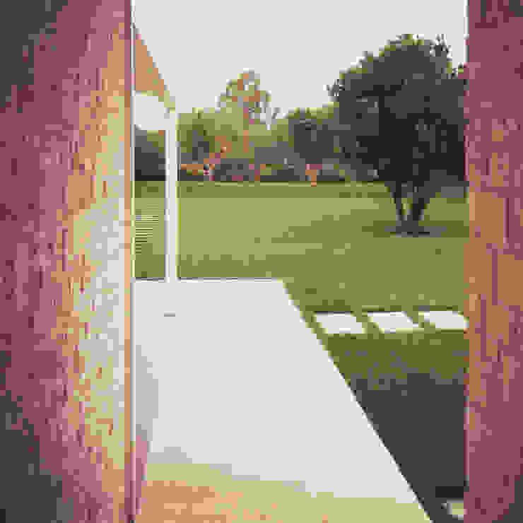 il giardino Giardino in stile mediterraneo di m12 architettura design Mediterraneo