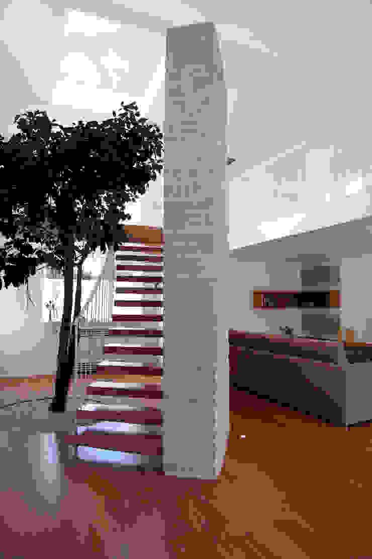 un albero in casa Case in stile mediterraneo di m12 architettura design Mediterraneo