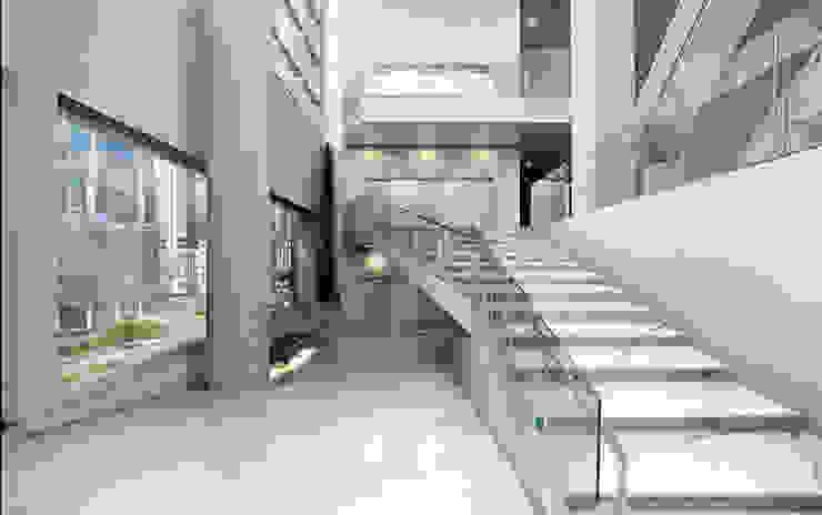 Maxfine Bianco Venato Paredes y pisos de estilo moderno de Tile Supply Solutions Ltd Moderno Azulejos