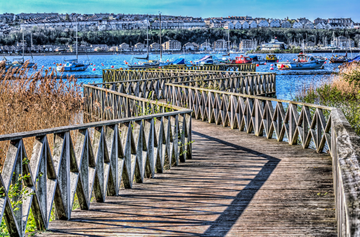 Boardwalk, Cardiff Bay Wetlands: eclectic  by Steve Purnell, Eclectic