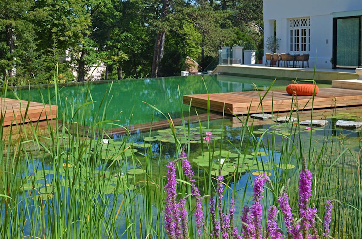 BIOTOP Natural Pool - Classic chic by BIOTOP Landschaftsgestaltung GmbH