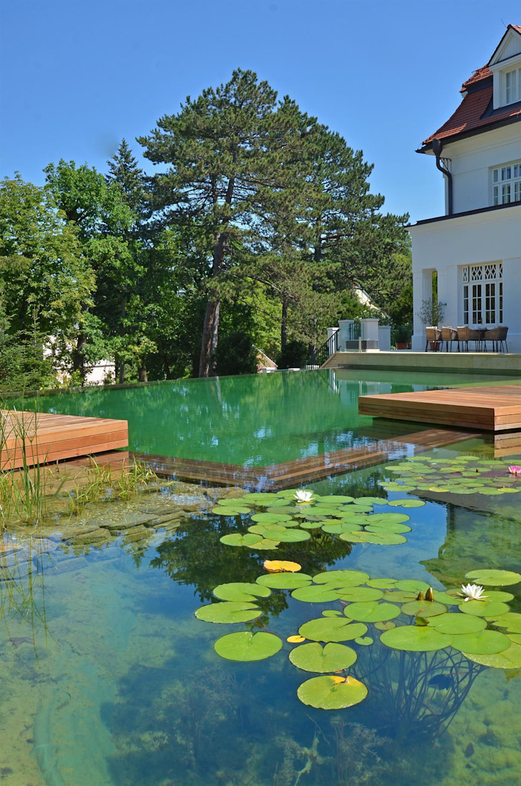 BIOTOP Natural Pool—Classic chic by BIOTOP Landschaftsgestaltung GmbH