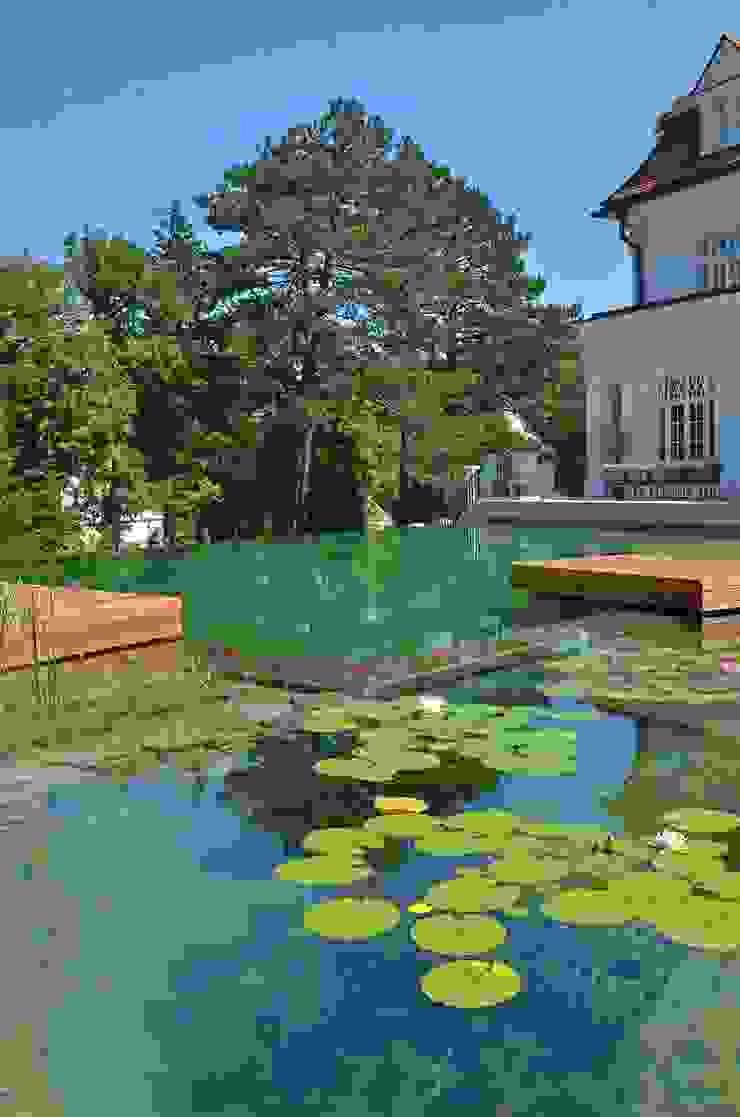 BIOTOP Natural Pool—Classic chic BIOTOP Landschaftsgestaltung GmbH