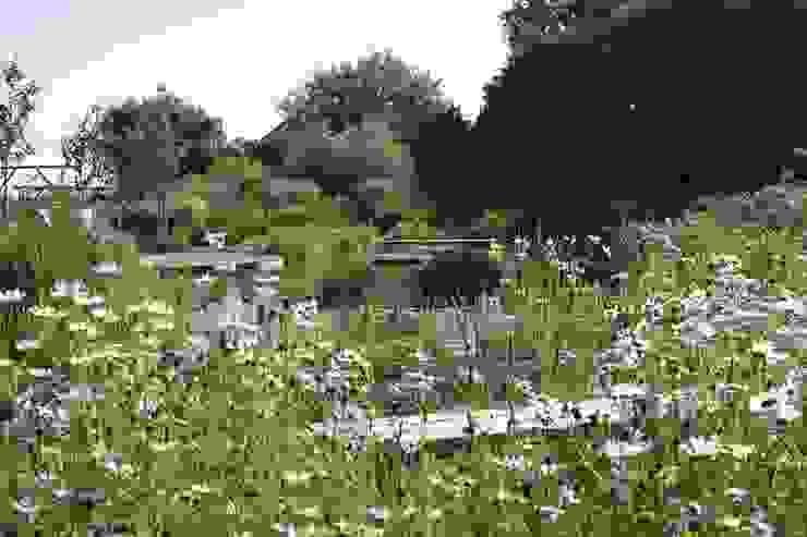 BIOTOP—The Garden of Eden: classic  by BIOTOP Landschaftsgestaltung GmbH, Classic