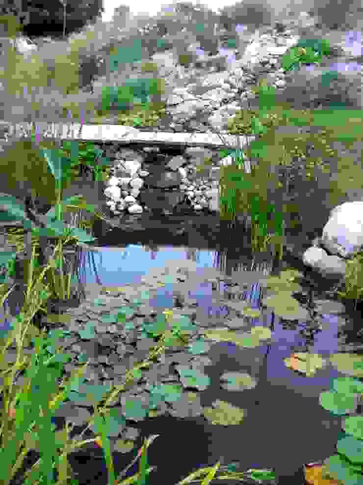 Bassin naturel Maisons modernes par Tangentes Architectes Moderne