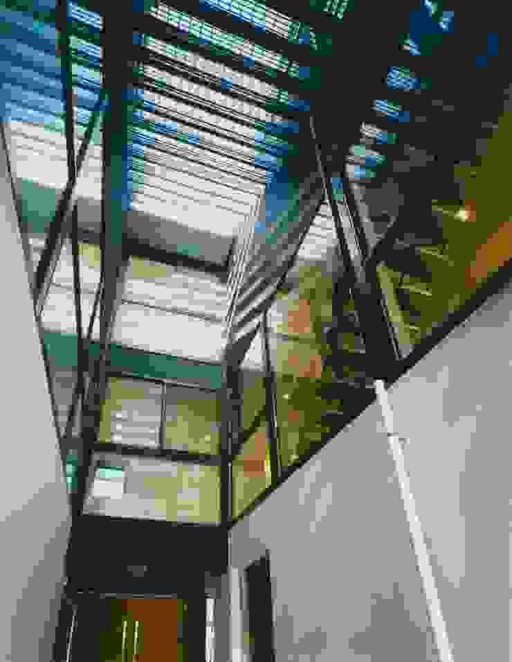 空を臨む家 モダンスタイルの 玄関&廊下&階段 の 原 空間工作所 HARA Urban Space Factory モダン