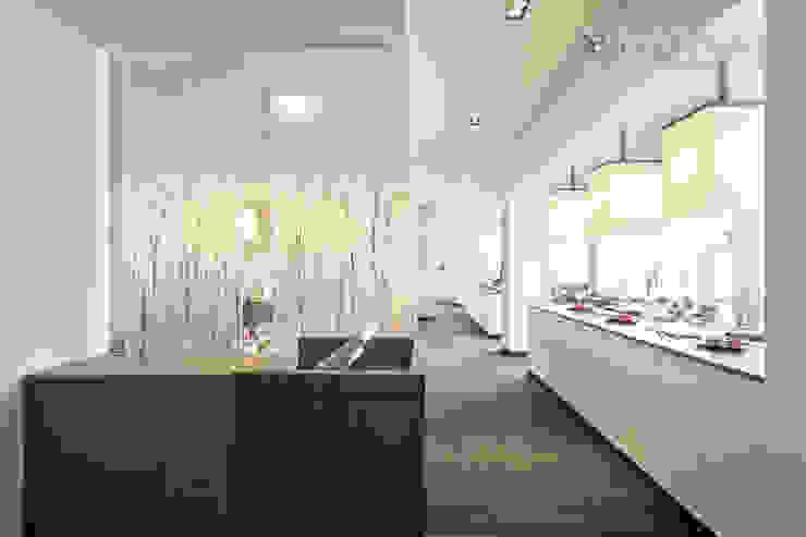 Transluzente Raumteiler: echte Birkenzweige in durchsichtigem Kunststoff Hotels von Designpanel - Elements for innovative architecture