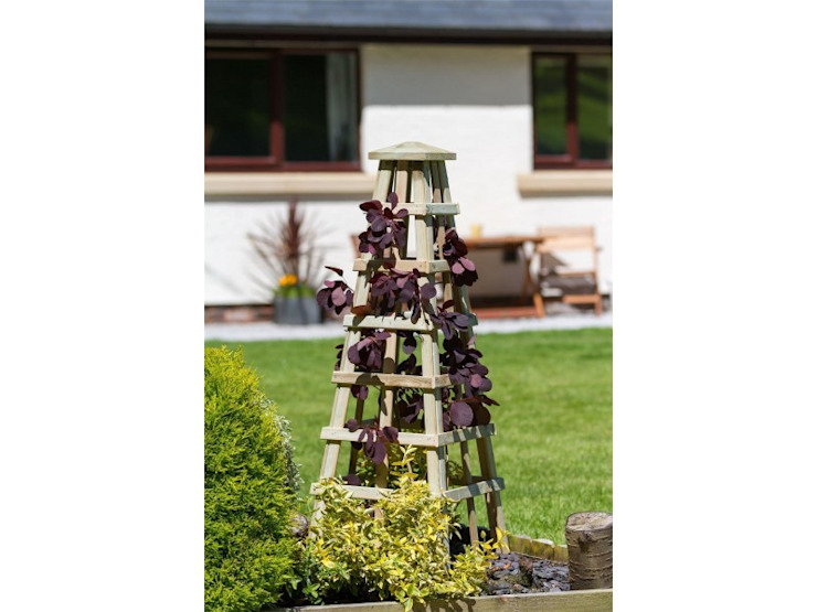 Turn your garden space into a useful and beautiful outdoor room Jardines de estilo rural de Perfect Plants Ltd Rural