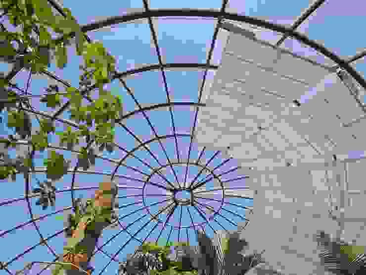 Botanischer Garten, Zürich Tropischer Garten von HPP Architekten GmbH Tropisch