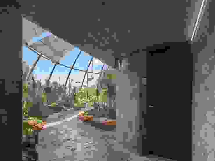 Botanischer Garten, Zürich Tropischer Flur, Diele & Treppenhaus von HPP Architekten GmbH Tropisch