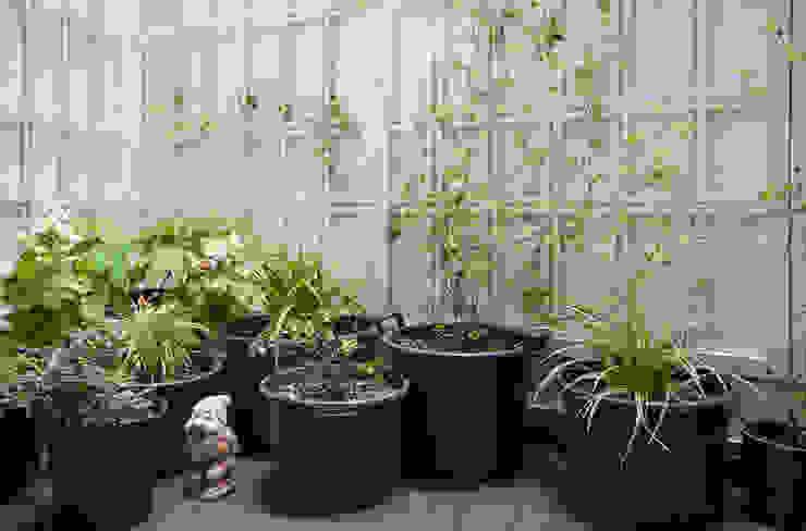 Jardines de invierno modernos de homify Moderno