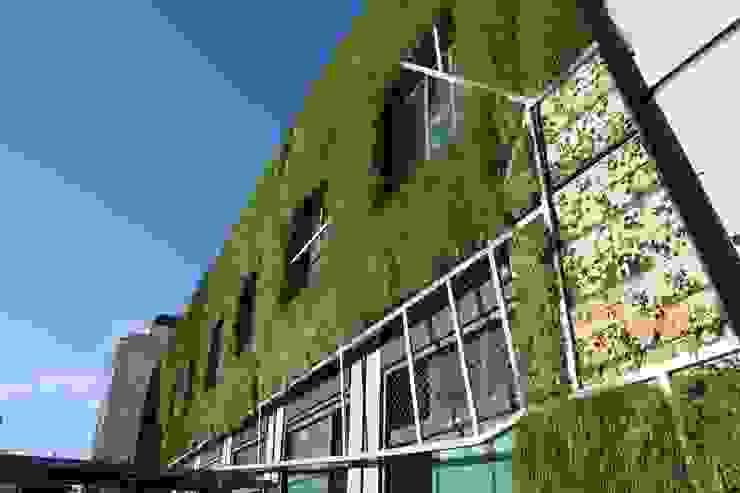Fachada vegetal en Vitoria Espacios de Urbanarbolismo