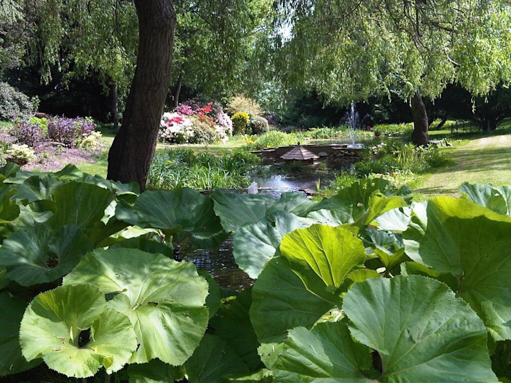 Water Garden Classic style garden by Cool Gardens Landscaping Classic