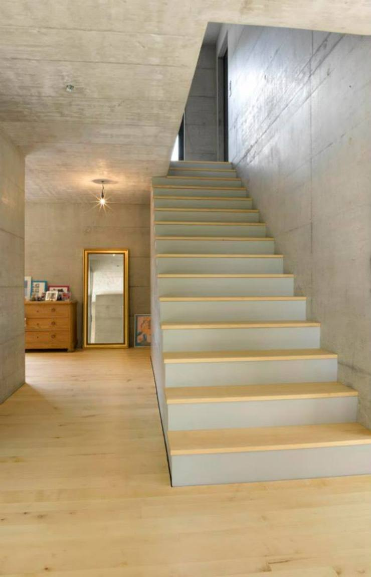Sub & Add Marty Häuser AG Moderner Flur, Diele & Treppenhaus