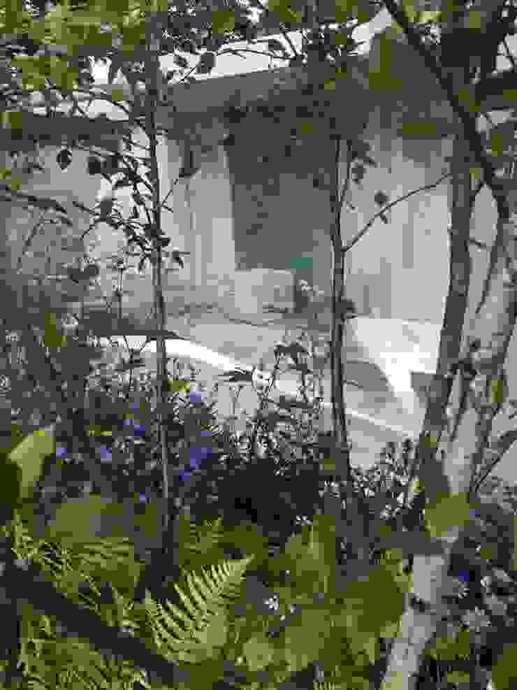Garden of Solitude - RHS Hampton Court Palace 2014 Silver Gilt Award and 'Best in Category': modern  by Alexandra Froggatt Design, Modern