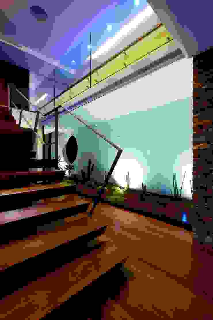Hall Distribuição - Augusta House Corredores, halls e escadas minimalistas por Risco Singular - Arquitectura Lda Minimalista