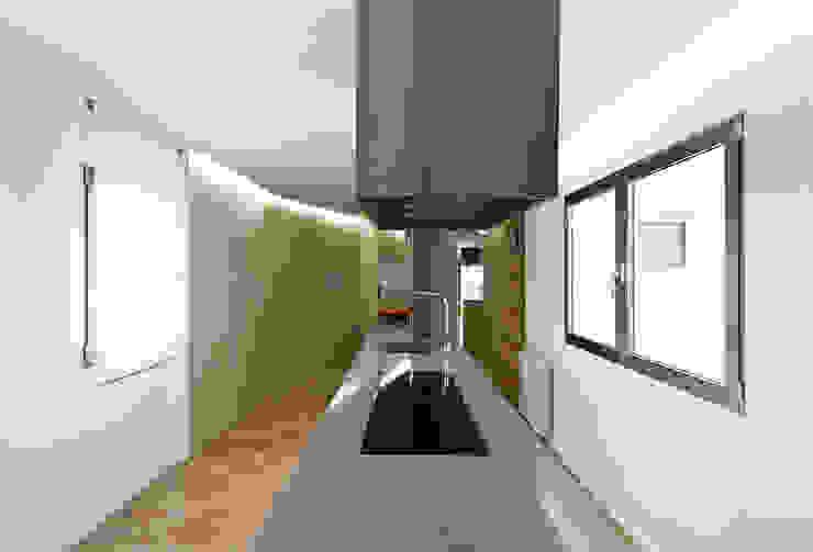 DMP arquitectura Modern Houses