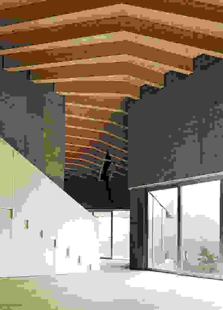 Cà Janus di Buzzi studio d'architettura