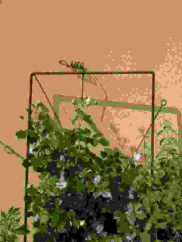 objet a habiter par les plantes ATELIER MACHLINE JardinAccessoires & décorations Fer / Acier Marron