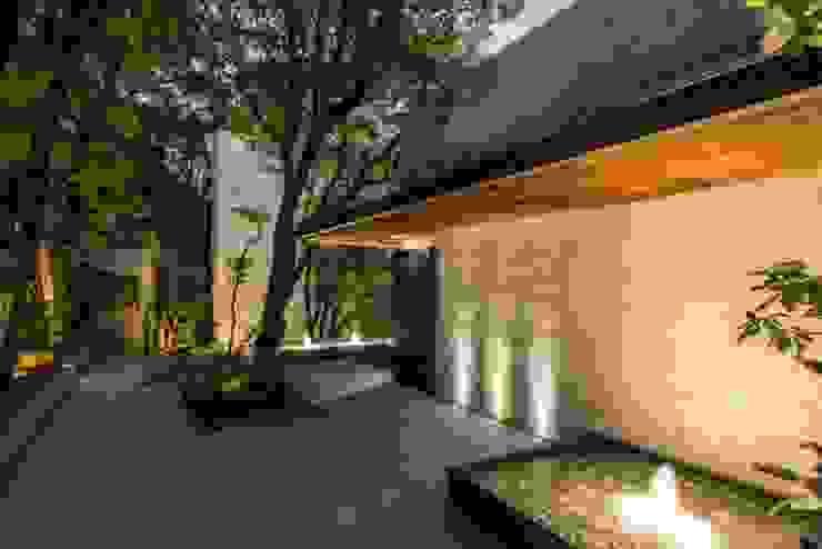 Entrada de Rhyzoma - Arquitectura y Diseño Moderno