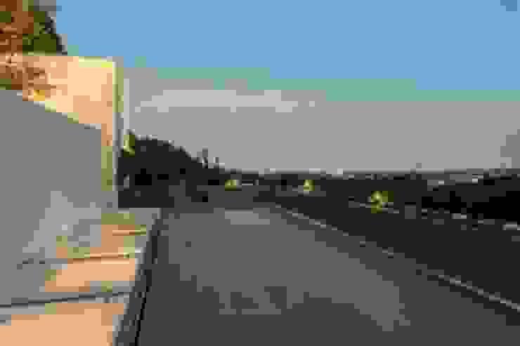 Terraza Azotea de Rhyzoma - Arquitectura y Diseño Moderno