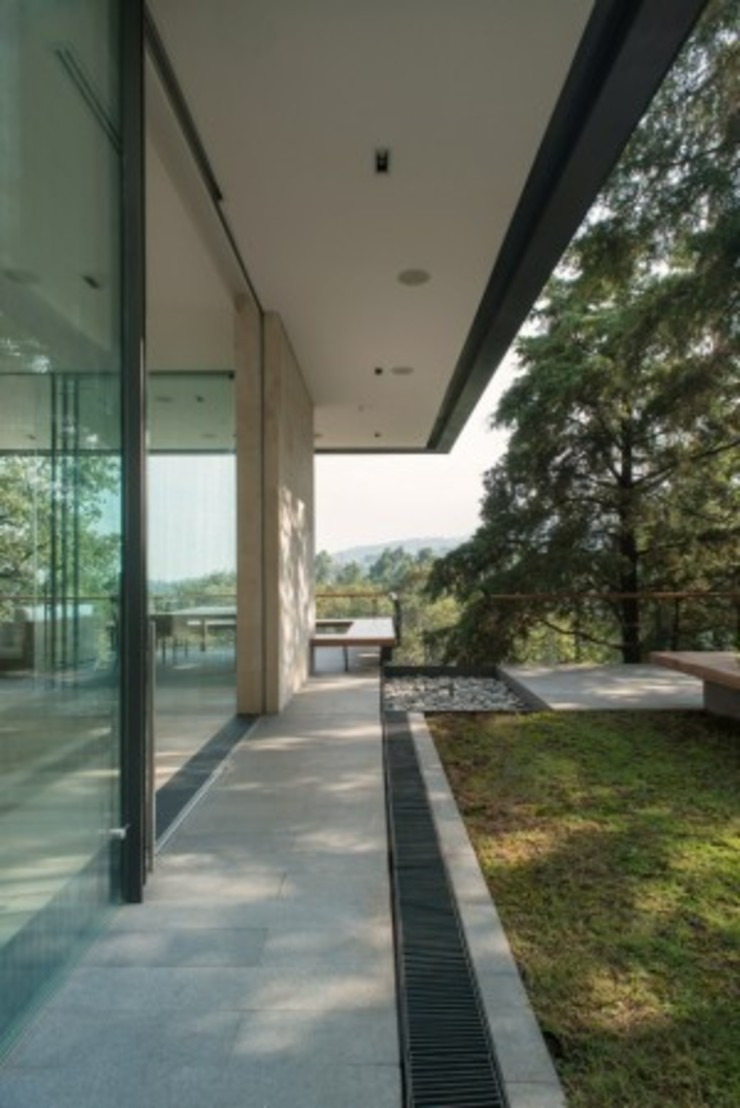 Terraza Exterior de Rhyzoma - Arquitectura y Diseño Moderno