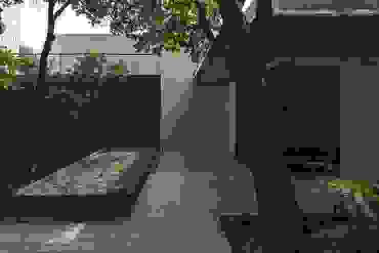 Plaza Acceso de Rhyzoma - Arquitectura y Diseño Moderno