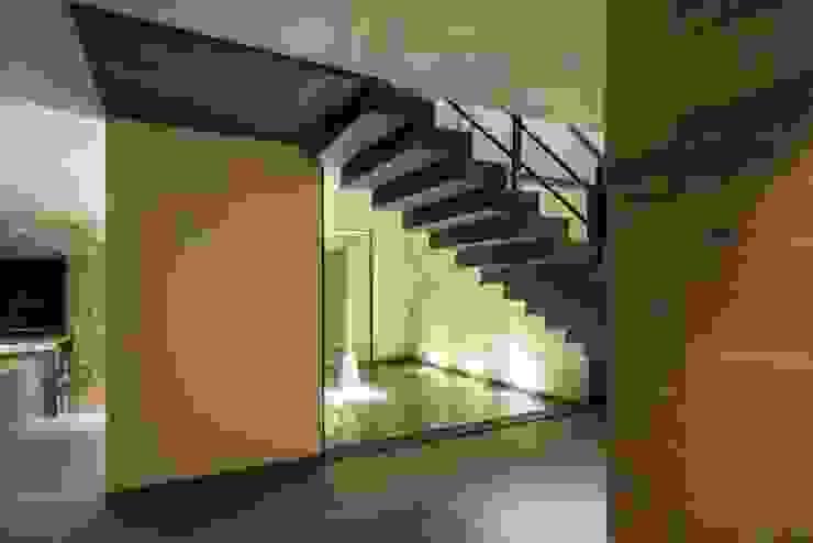 Escalera Principal de Rhyzoma - Arquitectura y Diseño Moderno