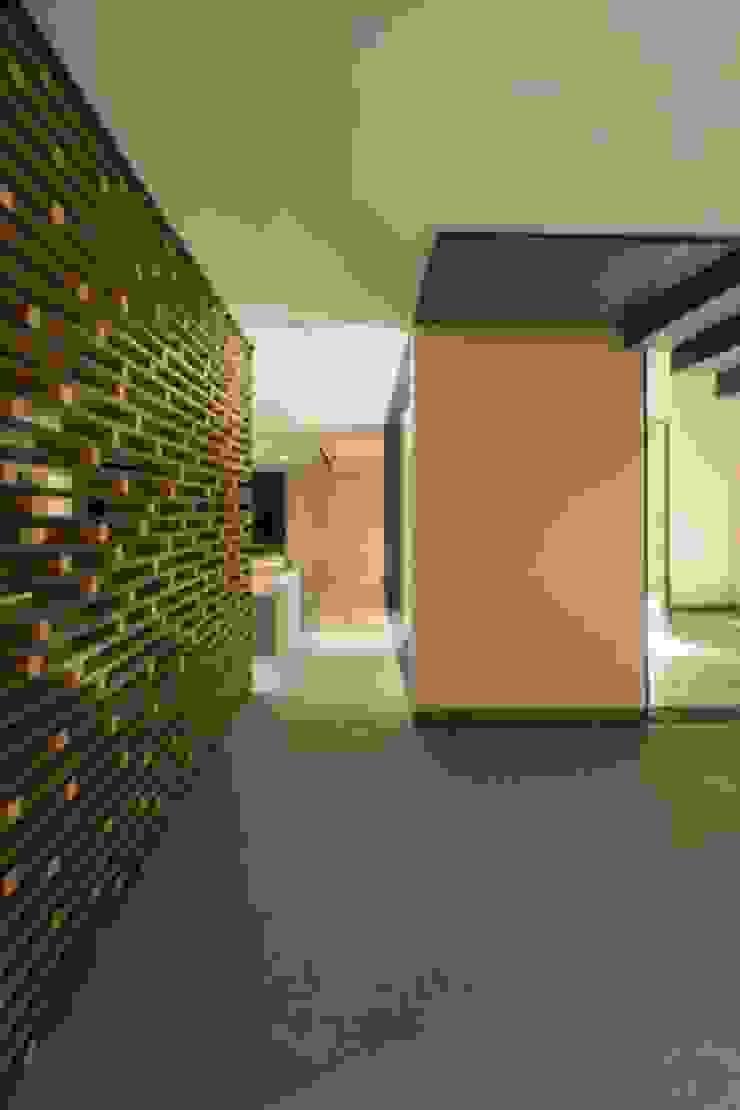 Celosia Lateral de Rhyzoma - Arquitectura y Diseño Moderno