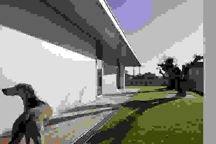 Projekty,  Ogród zaprojektowane przez A2+ ARQUITECTOS, Nowoczesny