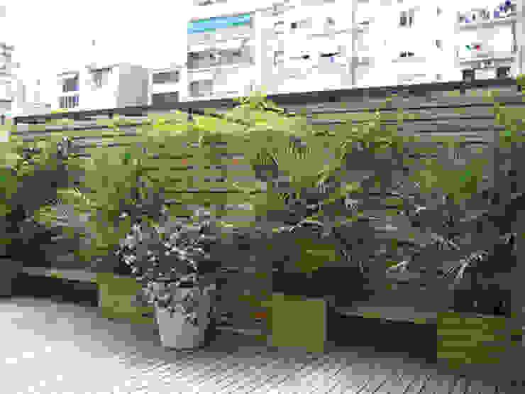 Giardino di Mariona Soler