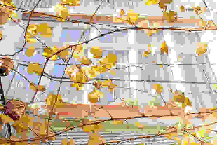 fachada galeria desde el patio Jardines de estilo moderno de PARRAMON + TAHULL arquitectes Moderno