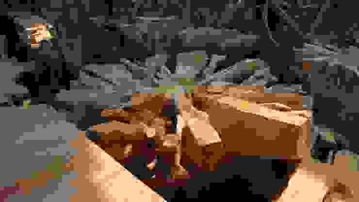 mueble de raiz  de teca :  de estilo tropical de comprar en bali, Tropical