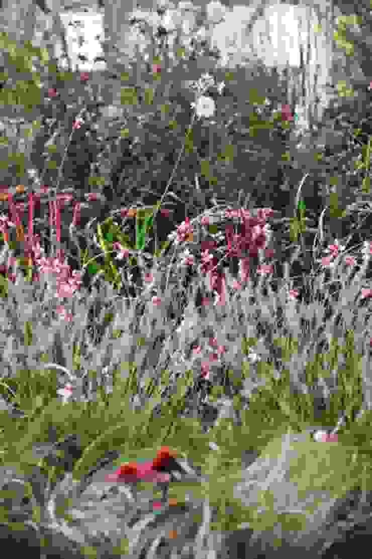 'Fili e Fior' Giardino di Barbara Negretti - Garden design -