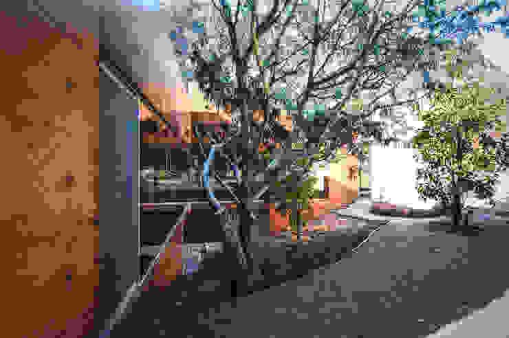 Narigua House Nowoczesny ogród od P+0 Arquitectura Nowoczesny