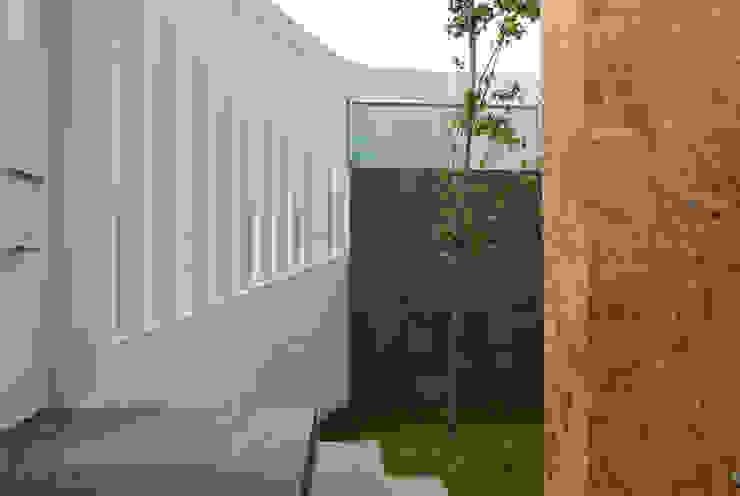 Área jardinada y barda delimitante Casas modernas de RECON Arquitectura Moderno