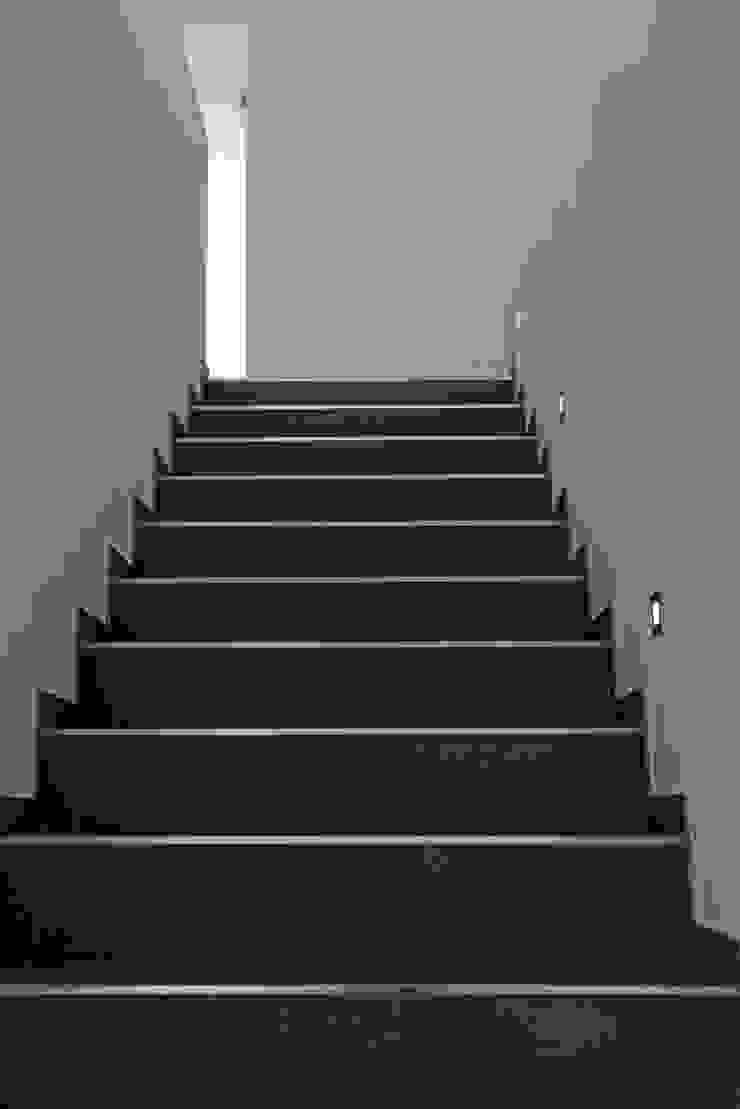 Modern Corridor, Hallway and Staircase by Herzog-Architektur Modern